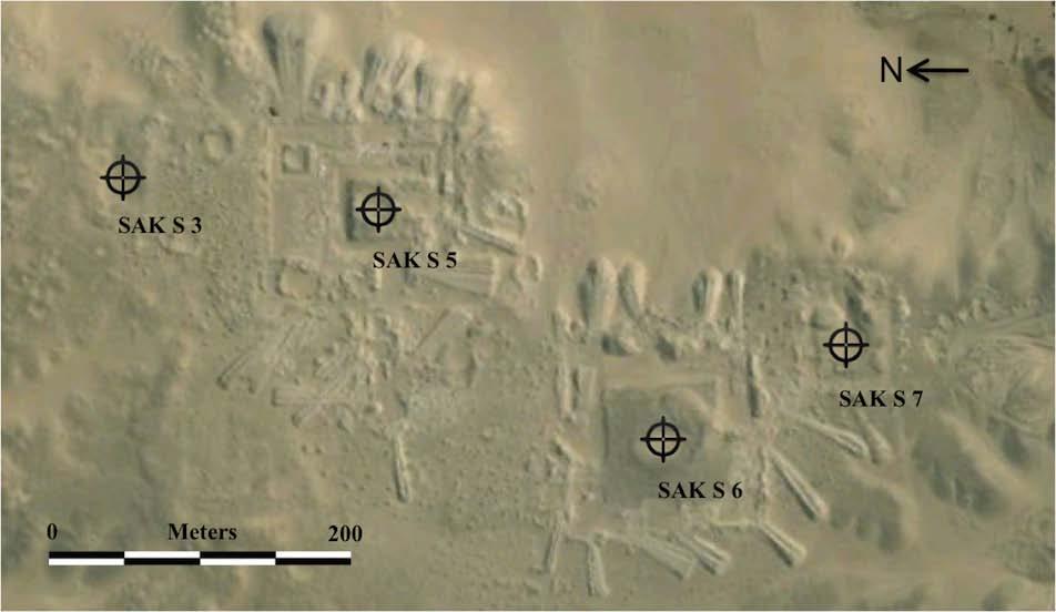 Saqqara findings, 2006