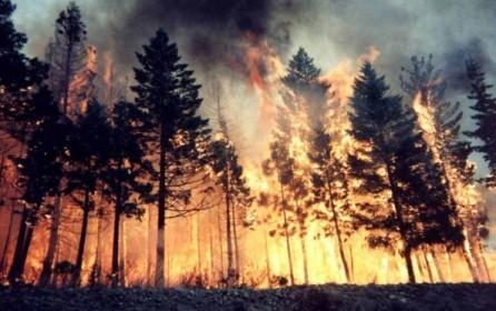 Landsat and the Spain summer 2012 wildfires (II)